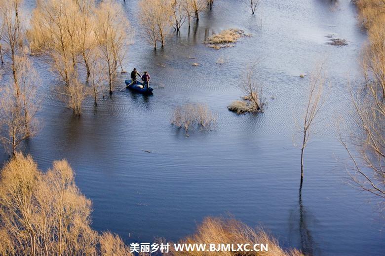 我与小岳�_春到妫水河3