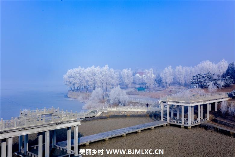 冬日青龙湖缩略图